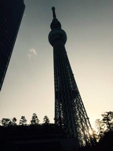 tokyo. (2).jpg
